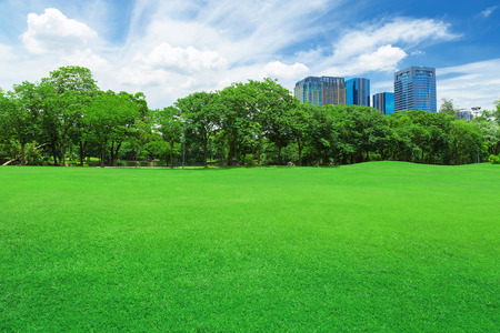 green grass field in big city park Stock Photo