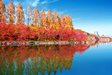 autumn scenery and modern buildings around moat river of osaka castle osaka japan
