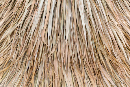 Dry leaf wall on the hut for thatch roof background Banque d'images