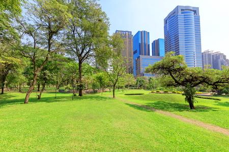 Beautiful garden in daytime outdoor nature background.