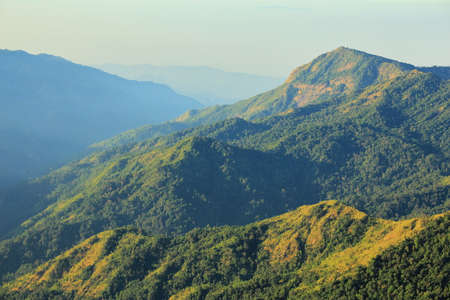 The green mountains in the morning are sunny.