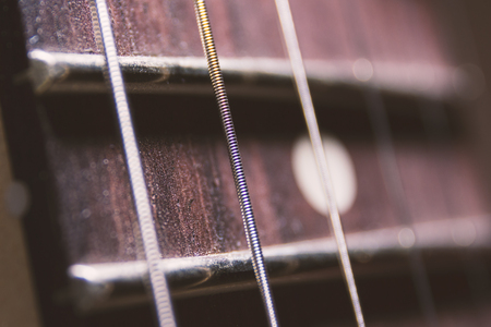 fingerboard: He string fingerboard fretboard macro close up detail
