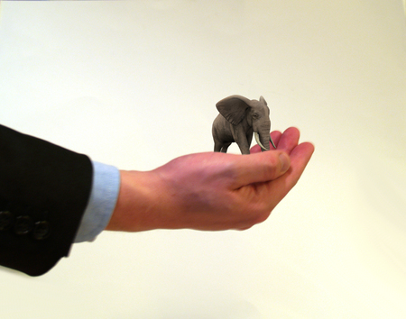 Businessman holding a miniature elephant in the palm of his hand photo