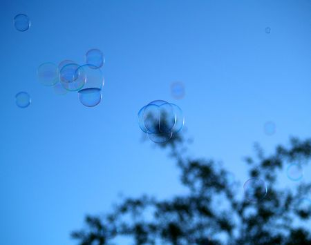 squeaky clean: Soap Bubbles with tree on Sky background with light reflecting on them