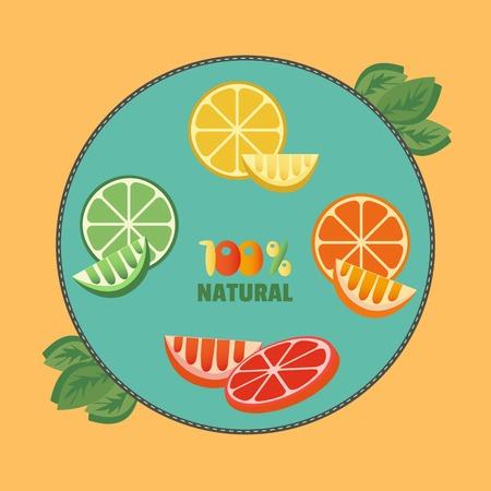 Zitrusfrüchte. Zitrone in Scheiben geschnitten mit Kräutern. Frische Zitronenscheiben-Konzept. Organische natürliche Frucht. Tropical Zitrus. Natürliche Frucht mit Vitamin für Saft, Dessert. Vektor-Illustration