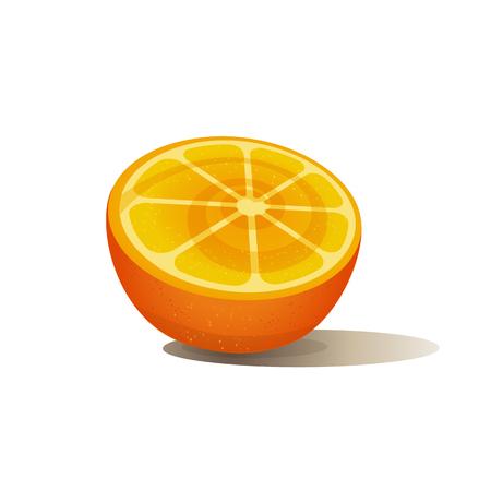 natura: Citrus Fruits. Sliced orange. Orange isolated on white.  Fresh orange wedge Concept. Organic natura fruitl. Tropical citrus. Natural dieting fruit dessert. Vector Illustration