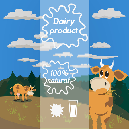 jersey cow: Milk cow. Dairy natural product Concept. Dairy farming concept. Nutritional product. Fresh farm organic product. Camomile from milk bottles. Milk splashes. Vector illustration