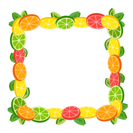 lemon lime: Citrus Fruits. Sliced lemon, lime. Orange and grapefruit. Organic natural fruit. Tropical citrus border. Dieting food concept. Vector Illustration