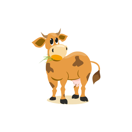 jersey cow: Milk cow. Dairy natural product Concept.Mammals animal isolated on white. Cartoon Holstein, Jersey cow logo.Udder, horns, hoofs. Vector illustration