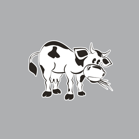 hoofs: Milk cow. Mammals animal isolated on white. Dairy agriculture Concept. Cartoon Holstein, Jersey cow. Udder, horns, hoofs. Vector illustration