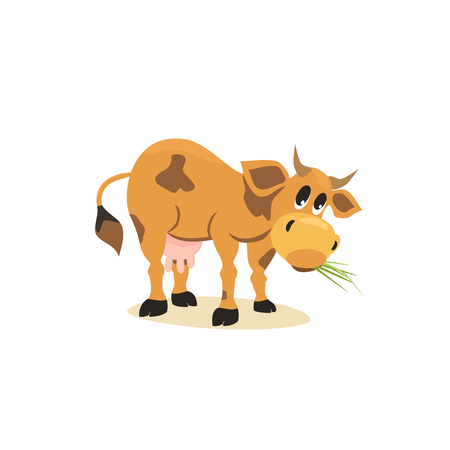 holstein: Milk cow. Dairy natural product Concept.Mammals animal isolated on white. Cartoon Holstein, Jersey  cow logo.Udder, horns, hoofs. Vector illustration