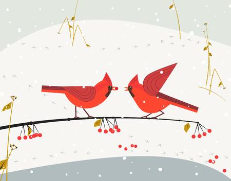 snow cardinal: Red cardinal bird set Illustration