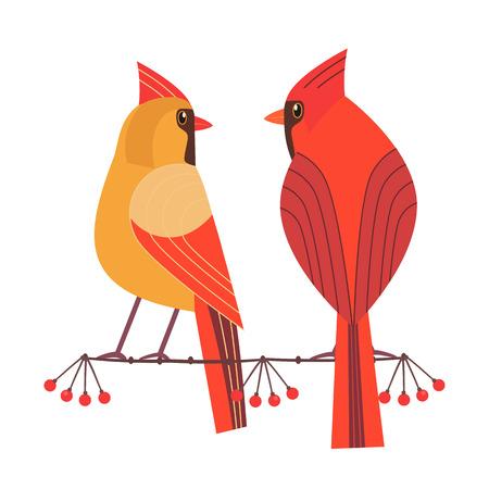 Cute Red Northern cardinal couple icon. Comic simple flat cartoon. Winter birds of backyard, city garden wonderland. Stylized funny bird. Template for wildlife vector scavenger hunt card background