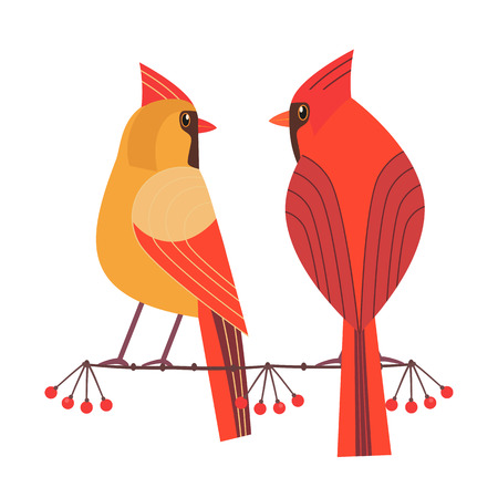 Cute Red Northern cardinal couple icon. Comic simple flat cartoon. Winter birds of backyard, city garden wonderland. Stylized funny bird. Template for wildlife vector scavenger hunt card background