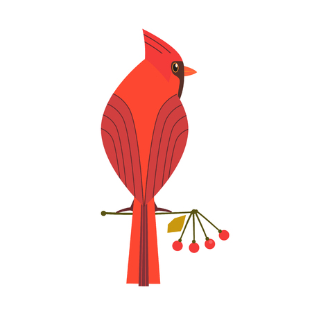 Cute Red Northern cardinal icon. Comic simple flat cartoon. Winter birds of backyard, city garden wonderland. Stylized funny bird isolated. Template for logo, vector scavenger hunt card background Vettoriali