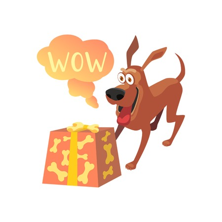 WOW with dog and box.