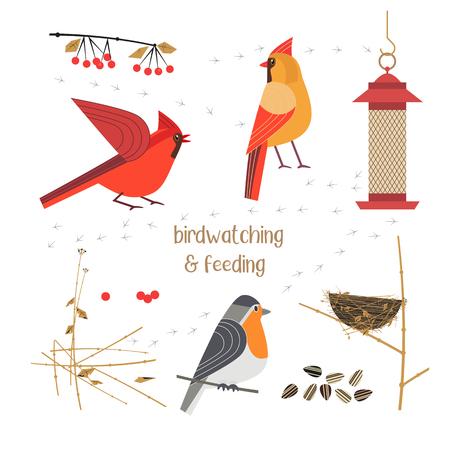 Birdwatching, bird feeding icon set. Red Northern cardinal, robin comic flat cartoon. Birds straw nest, feeder, sunflower seeds. Minimalism simplicity design. Wildlife banner sign. Vector illustration