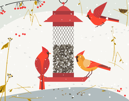 Cute Red Northern cardinal bird poster. Comic flat cartoon. Minimalism simplicity design. Winter birds feeding by sunflower seeds in feeder. Template bird watching card background. Vector illustration.
