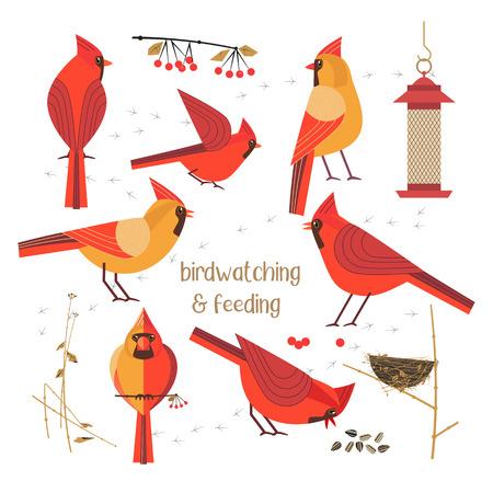 Cartel de alimentación de aves Foto de archivo - 93124924