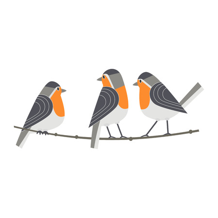 Cute robin icon isolated on white background.