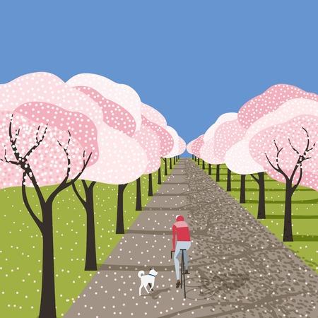 Fleurs de cerisier de printemps dans l'affiche extérieure du jardin de la ville. Cycliste faisant du vélo, chien courant dans l'allée du parc sakura en fleurs. Style rétro de dessin animé coloré. Illustration vintage de style de vie de loisirs de vecteur Vecteurs