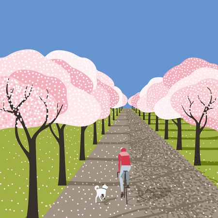 Spring cherry blossoms in city garden outdoor poster. Bicyclist riding bicycle, running dog on blooming sakura park alley. Colorful cartoon retro style. Vector leisure lifestyle vintage illustration