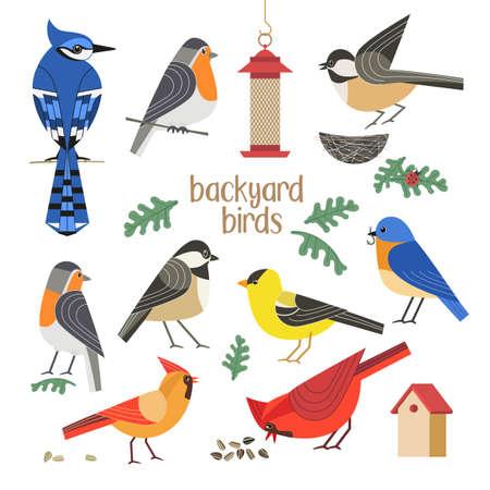 Backyard birds flat color vector icons collection 向量圖像