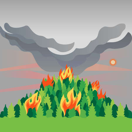 Forest fires disaster mountain trees flat vector