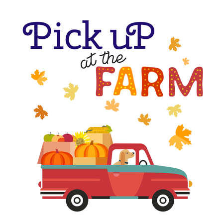 Red farm truck with pumpkins flat color vector. Fall season pumpkin apples harvest pick at farm background. Farm pickup cartoon design element. Autumn vegetables harvest banner template illustration