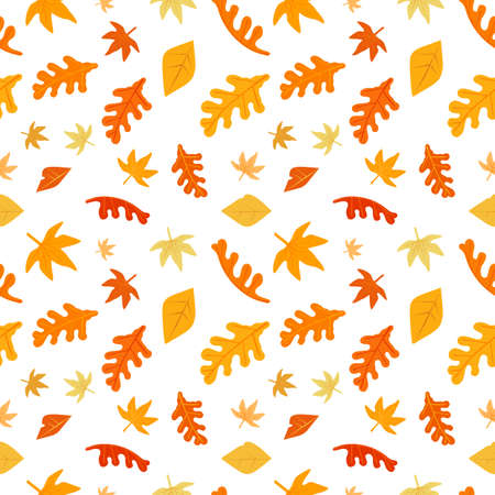 Autumn falling leaves seamless vector pattern. Fall season leaf background illustration. Seasonal wallpaper, Thanksgiving Day card template. Orange, yellow, brown red birch, oak, maple tree leaves 向量圖像