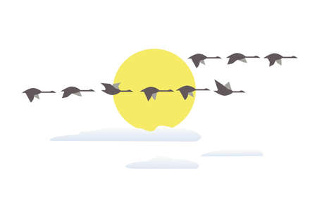 Wild geese flying at sunset minimalist icon