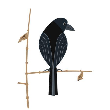 Black crow minimalistic flat color vector icon 向量圖像