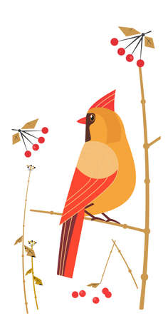 Red Cardinal Female siting on tree branch vector icon. Cute cartoon wild backyard bird illustration in minimalist style. Vertical size template for smartphone case background. Print design element Иллюстрация