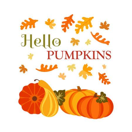 Autumn Fall Harvest Pumpkins cute design element. Farm harvest festival vector background. Autumn color Maple, Oak Leaf, Pumpkin cartoon illustration. Fall season holiday festive celebration template