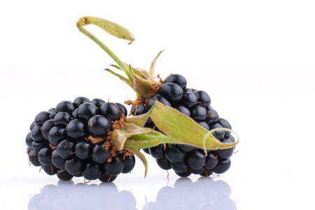 blackberry: Blackberry fruit