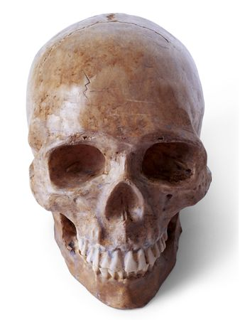 rotten teeth: Fake  skull. Path included Stock Photo