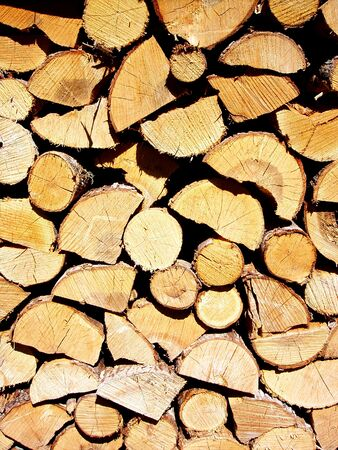 Wood stacked for winter Stockfoto