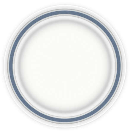White plate with blue trim, taken over head.