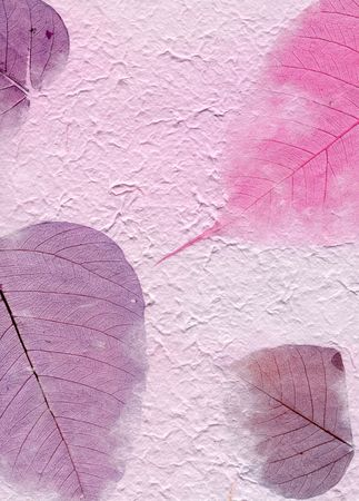 untidy: Close up of purple paper with leaves. Stock Photo