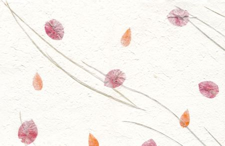 Close up of White hand made paper with flower petals and greass.