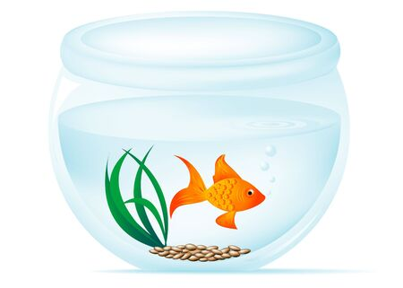 gold fish bowl: Fish bowl illustration with gold fish, pebbles, grass, bubbles, and ripples.