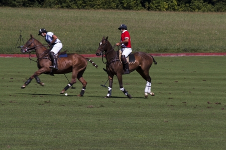 Polo players in motion