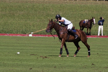 Polo player reaching for ball