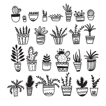 Flower pots and house plants set. Can be used as template, card, poster, etc