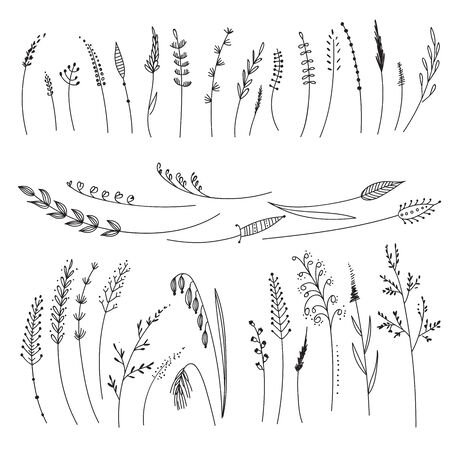 Vector set with cereals, grass, flowers. Can be used as design element, decoration.