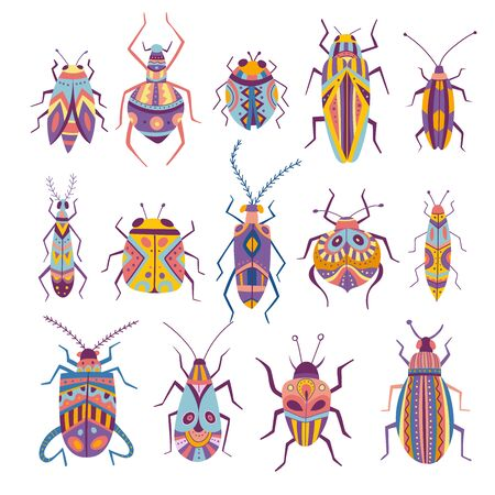 Vector collection of colorful bugs in boho style with tribal ornaments. Can be used as a template for your design, stickers,  icons, apparel.