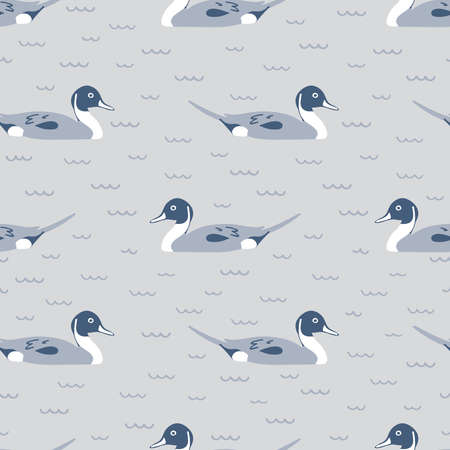 Seamless pattern of Northern Pintail swimming. This illustration of duck can be printed and used as wrapping paper, wallpaper, textile, fabric, apparel, etc.