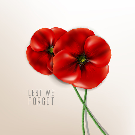 world wars: remembrance day - 11 November - lest we forget - veterans day
