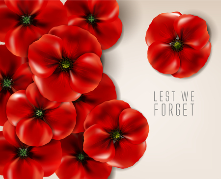 reminder: remembrance day - 11 November - lest we forget - veterans day