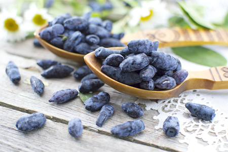 花の木のテーブルの上の青いスイカズラ漿果を持つ 2 つのスプーン